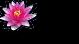 Flora harmonia Logo